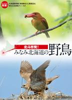 野鳥ミニリーフレット